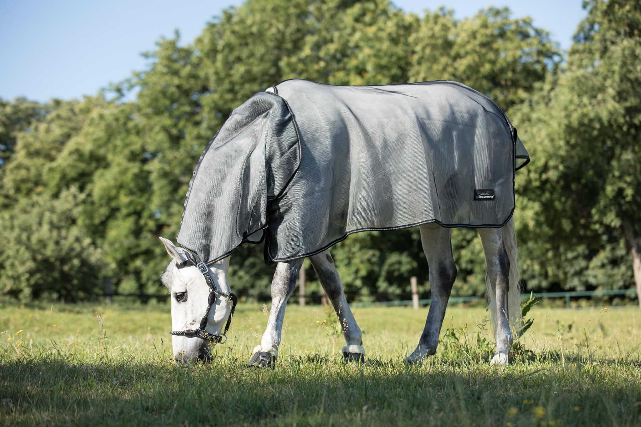 equine-microtec-marvin-vroomen-200601-FS193995wRFNxCZw37FVR